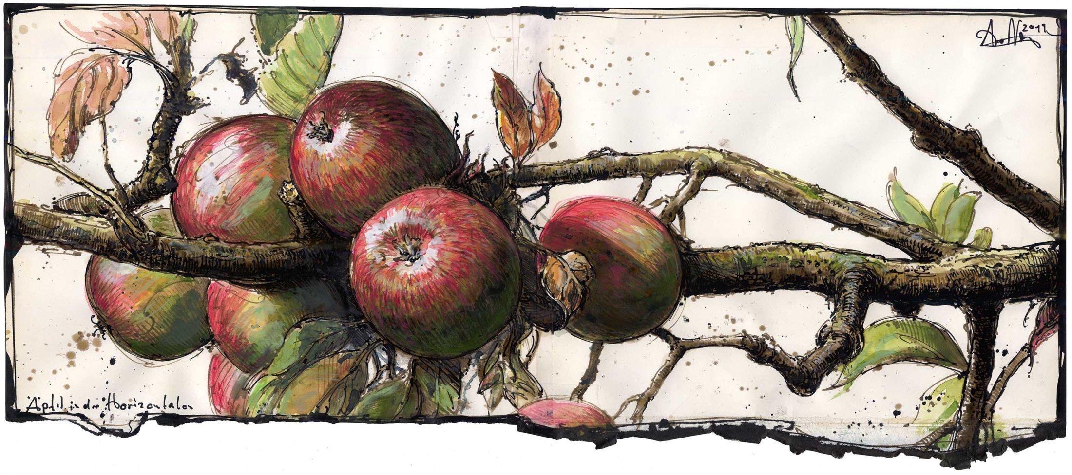 Äpfel in der Horizontalen