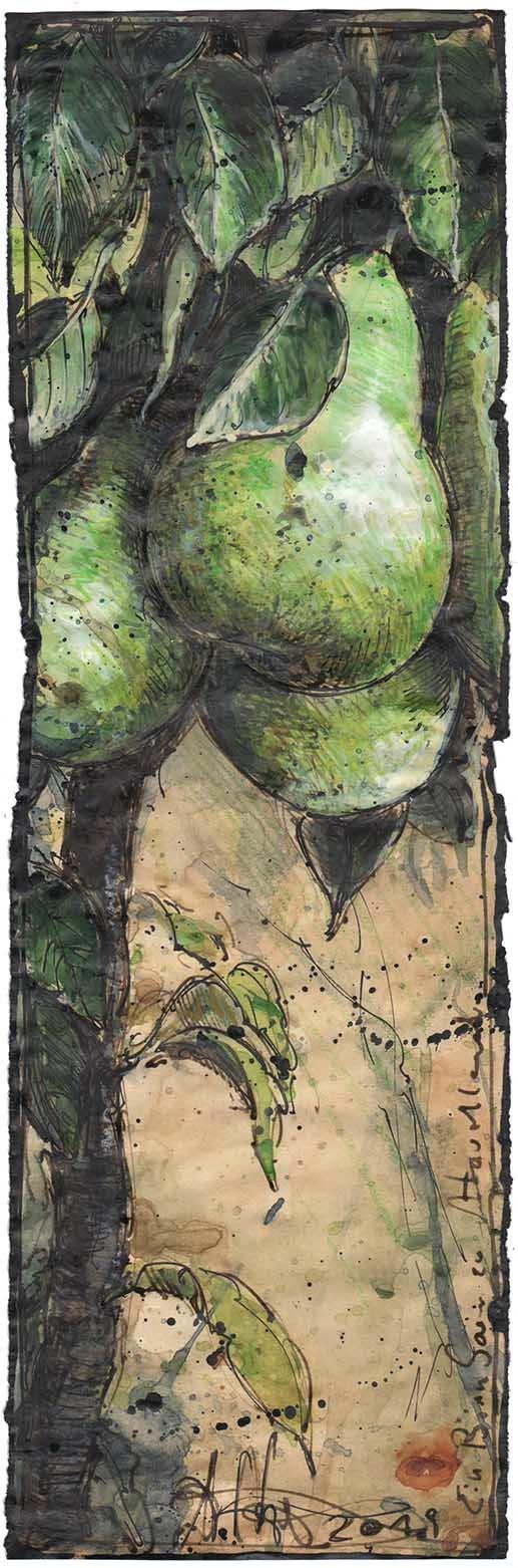 Ein Birnbaum zu Havelland