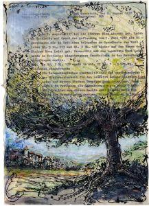 Baum zu Tennstedt