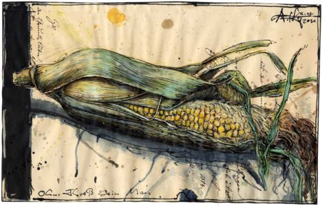 Ohne Fleiß kein Mais