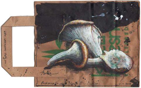 Austernpilze auf Boesner Einkaufstüte