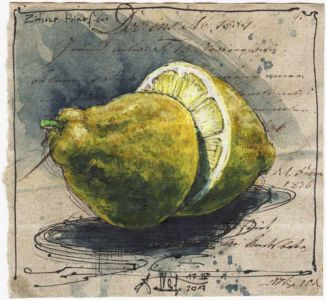 Zitrone Primofiore